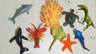 Морские животные игрушки и крокодил динозавры Sea animals toys crocodile dinosaur