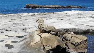 基隆八斗子大坪海岸海豹石空拍(DJI Mavic 2 Zoom)