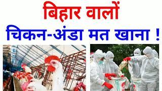 बिहार के लोगों के लिए बहुत बुरी खबर, बर्ड फ्लू का कहर जारी है//Bird flu virus//SK SONU Tech World