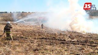 Шесть возгораний сухой травы уже произошло в этом году в Вологодской области