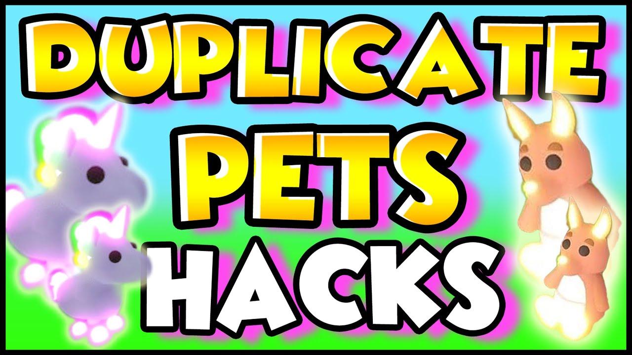Hacks To Duplicate Pets To Make Mega Neons Fast In Adopt Me Roblox Prezley Adopt Me Youtube