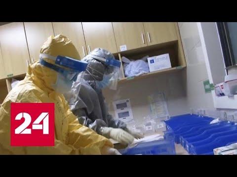 Новые данные о распространении коронавируса: погибли 2100 человек, заразились почти 76 тысяч - Рос…