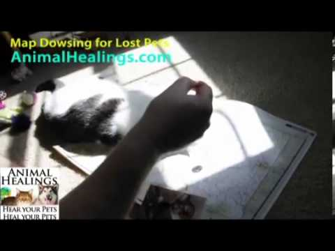 About Map Dowsing for Lost Pets