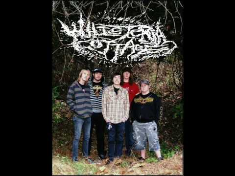 Whisteria Cottage - Confined