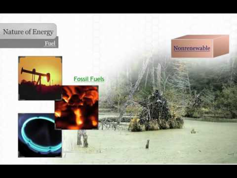 Forms of Energy - Fuel