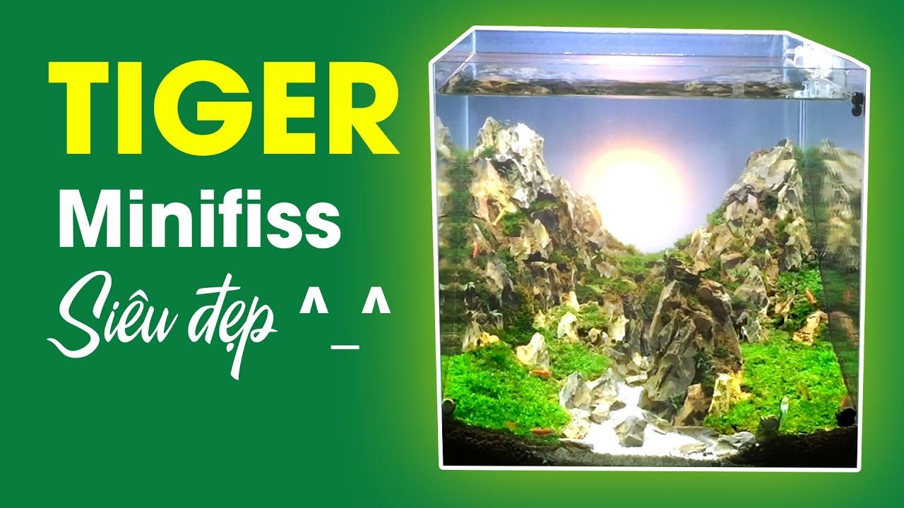 Setup Bể Thủy Sinh Để Bàn Núi Đá Tiger Minifiss | Nano cubic 30 Aquarium Dragon Stone Layout