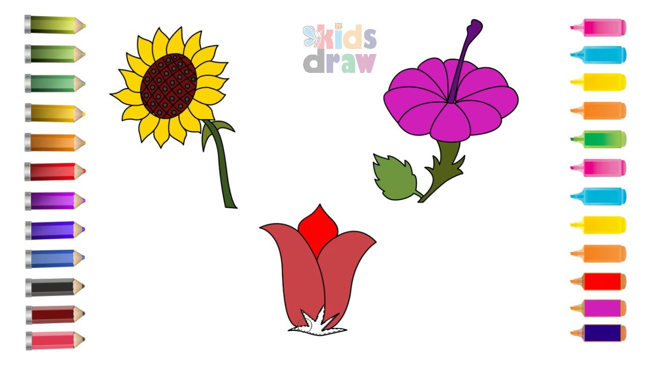 how to draw flower rose lily sunflower u0026 coloring pages for