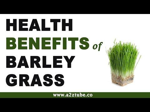 Health Benefits of Barley Grass