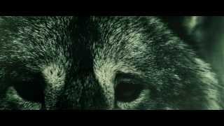 Valerinne - Hysterema (Official Video)