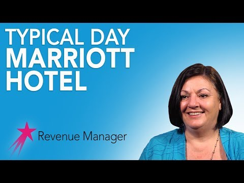 Revenue Manager: Typical Day - Michelle Hoffman Career Girls Role Model