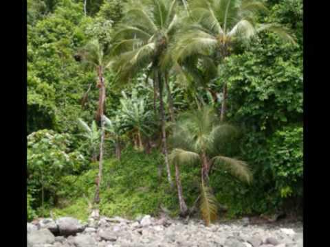 Panama and Ecuador photos