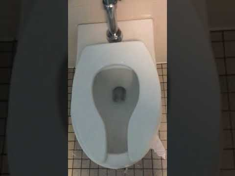 Library bathroom toilet flushing