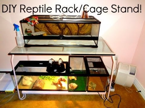Diy Reptile Rack Cage Stand Youtube