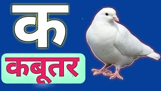 k se kabutar,Kamal hindi varnamala song