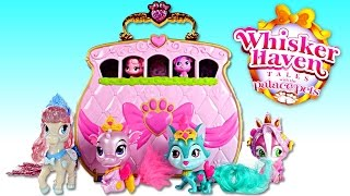 Disney Princess Palace Pets Whisker Haven Tales Doll Opening with Amy Jo on DCTC