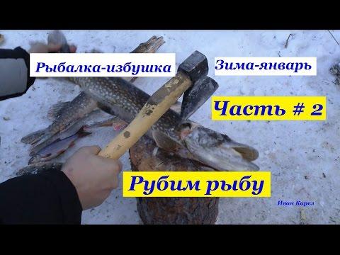 Рубим рыбу , Рыбалка , Лесная избушка,зима январь,часть # 2,