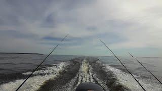 Ловля судака весной Открытие сезона 2021 Рыбалка в Камском Устье