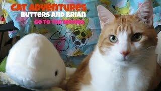 Cat Adventures | Butters And Brian Go To The Movies