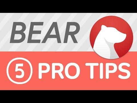 Bear   5 Tips & Tricks