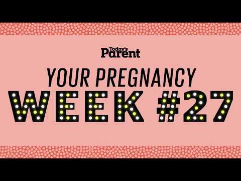 Your pregnancy: 27 weeks