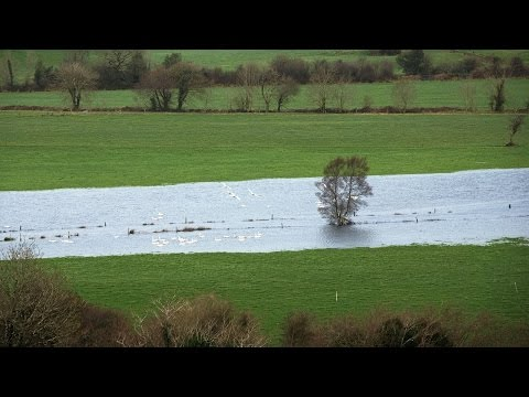 Flood Studies Update (FSU) Methodologies and Web Portal