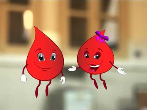 Voluntary Blood Donation, Donate Blood Save Life, WE CAN DO