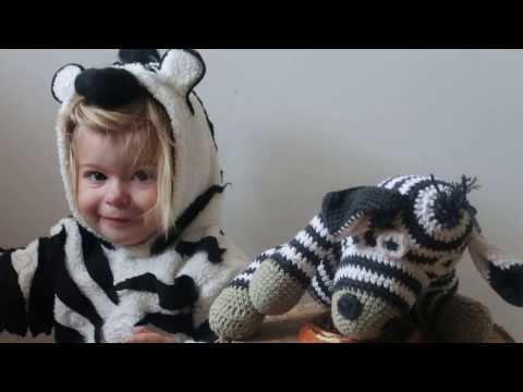 THE STRIPY ZEBRA - ANIMAL SONG FOR KIDS |  Animals Songs for Children | Zebra's song for toodlers