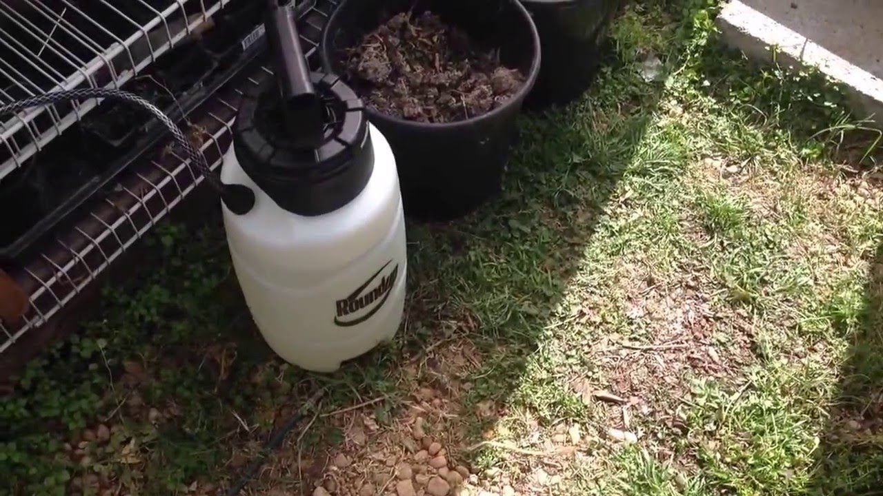 Round Up Sprayer Review