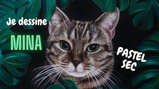 Je dessine Mina le chat - Portrait pastel sec