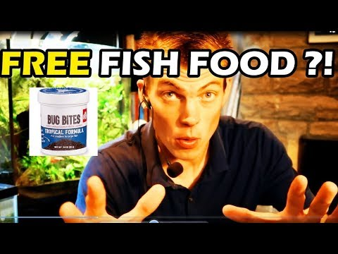 FREE Aquarium Fish Food?  FREE FLUVAL BUG BITES (No BS!)