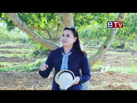 SOLAR GREEN ENERGY (CAMBODIA) CO.,LTD   BTV's agriculture program