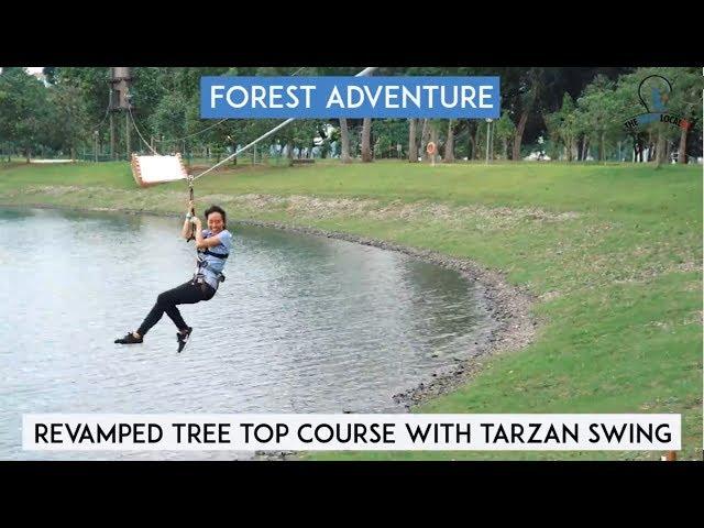 Tree Top Course With Tarzan Swing