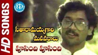 Seetharamaiah Gari Manavaralu Songs - Pusindi Pusindi Punnaga Video Song - ANR | Meena || Keeravani