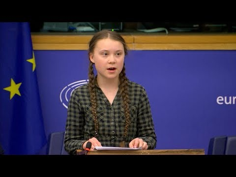 Greta Thunberg urges MEPs to 'panic like the house is on fire'