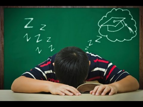 Can you learn a new language while you sleep? - Big Think