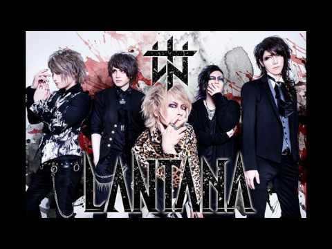 LANTANA - LIBERATE Full Single
