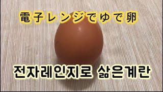 超簡単/電子レンジでゆで卵/초간단/전자레인지로삶은계란