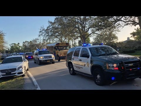 Florida shooting: armed officer never went in to confront gunman