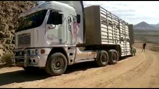 Toyota Landcruiser Pulls Double Trailer Truck loaded with 200 head of cattle in Namibia Africa