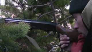 Весенняя охота на косача ( hunting for grouse ).mp4