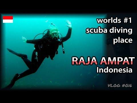 Diving in Raja Ampat (Papua, Indonesia)