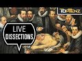 Top 10 Astonishing Things You Didn't Know About Human Dissection