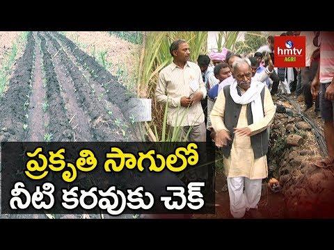 Sprinkler Irrigation System | Sugarcane & Banana Farming Success Story | Subhash Palekar | hmtv Agri