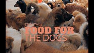 Food for the dogs   Revd. Iain Osborne