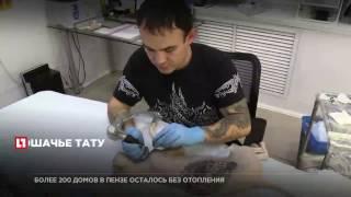 Татуированный кот-сфинкс получил новую наколку