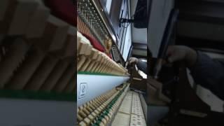 피아노조율30년1급출장조율,서울,경기,인천 무료출장