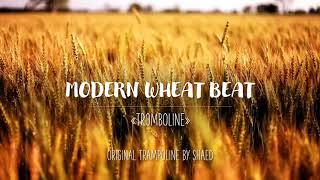 MODERN WHEAT BEAT - Tromboline