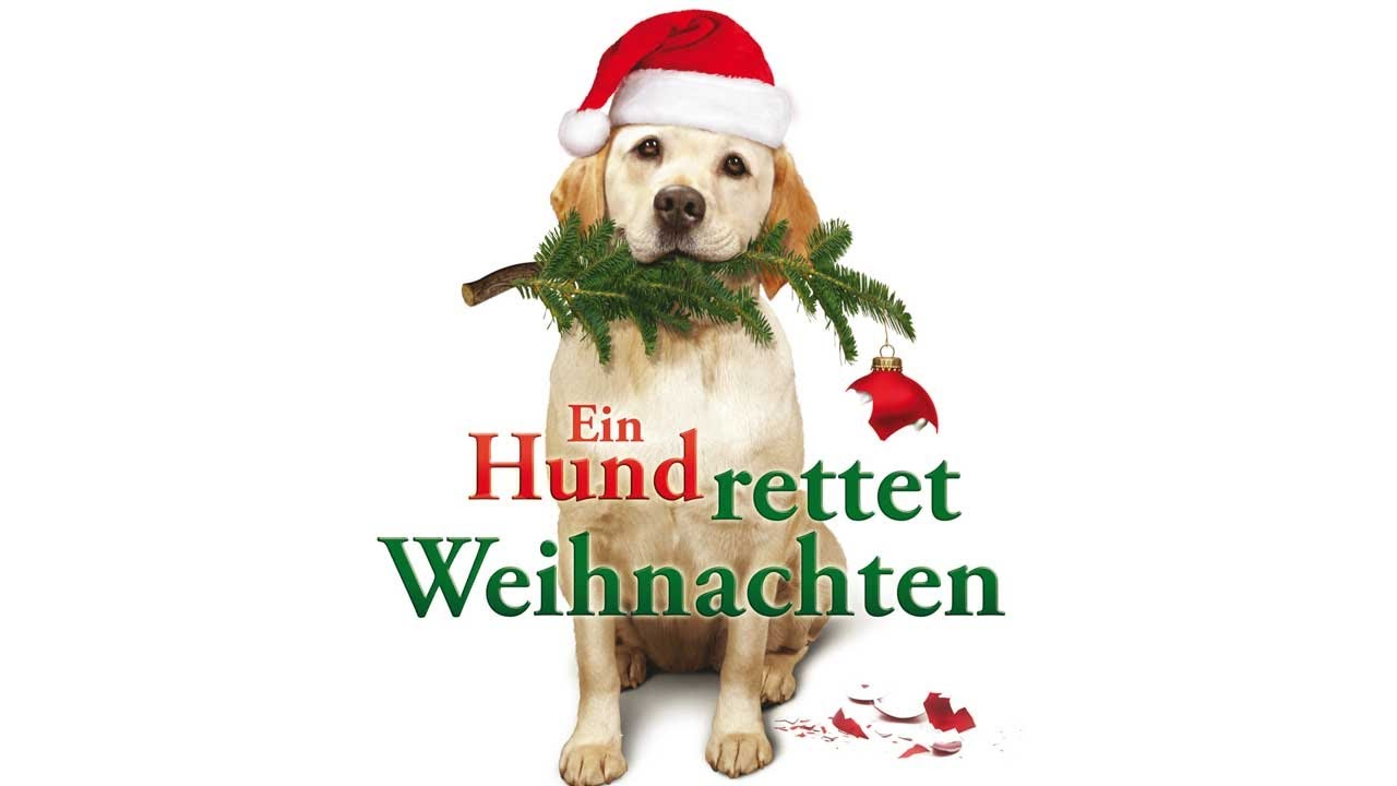 ein hund rettet weihnachten trailer hd deutsch german youtube
