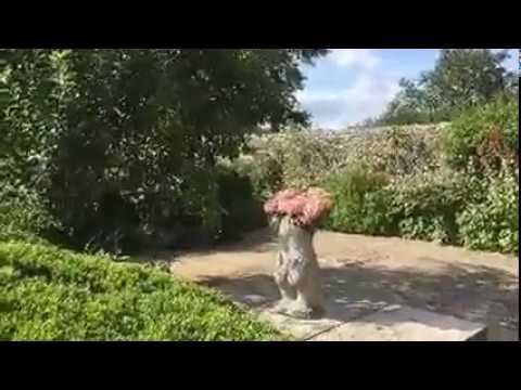 Charleston Gardens - Bloomsbury Group in Sussex