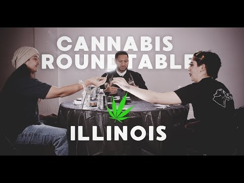 Watch a Congressional Candidate Smoke Lots of Weed in This Epic Campaign Video